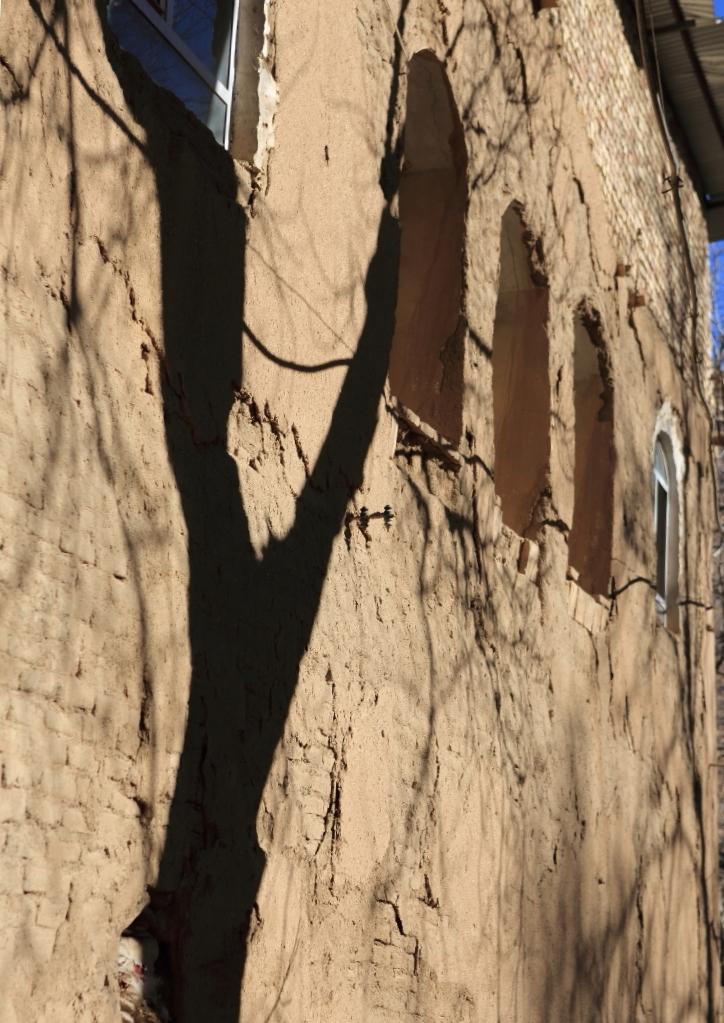 The Shadow Tree!