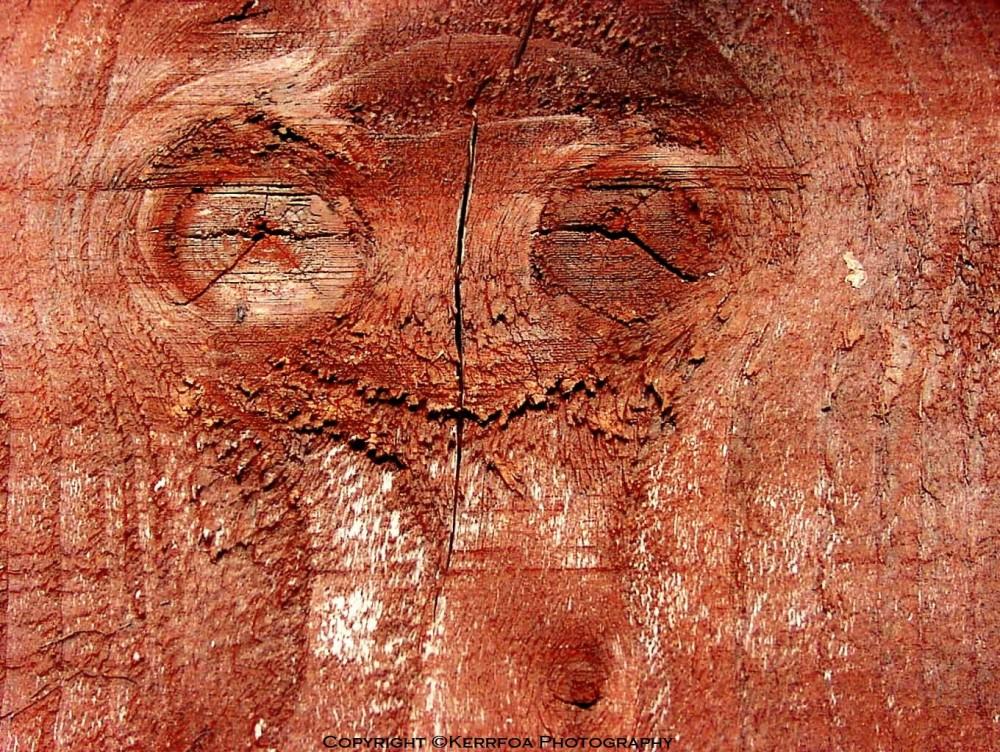 E.T. Wood l'Extra-Terrestre