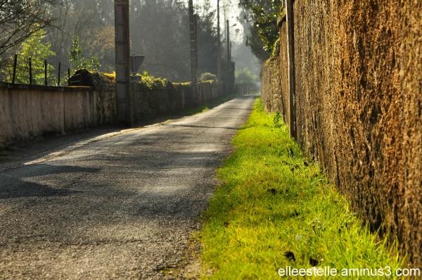 Mur et chemin, jour 294 ...