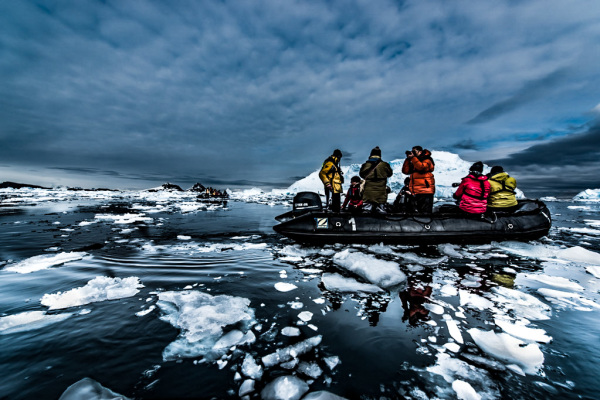Morning rush hour in Antarctica