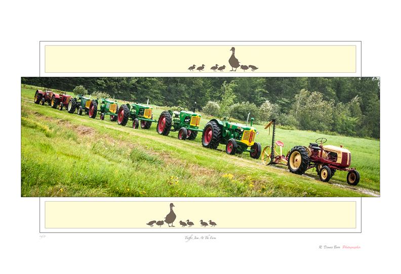 Traffic Jam At The Farm