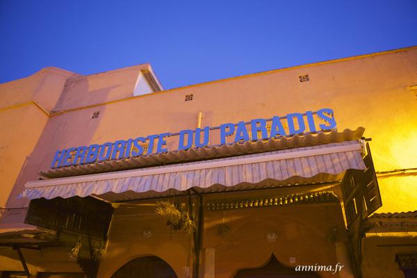 herboristerie, paradis, Maroc