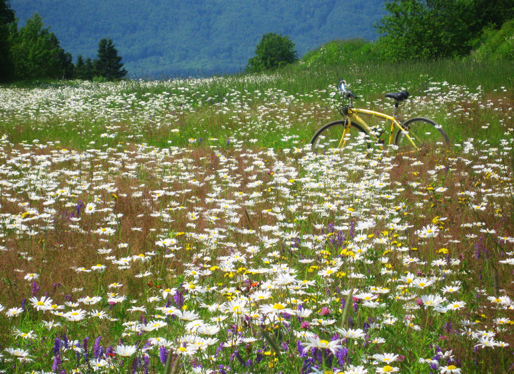 Bicyle trip in Charlevoix Quebec