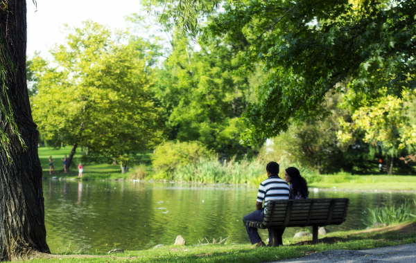 outdoors,park,pond,couple