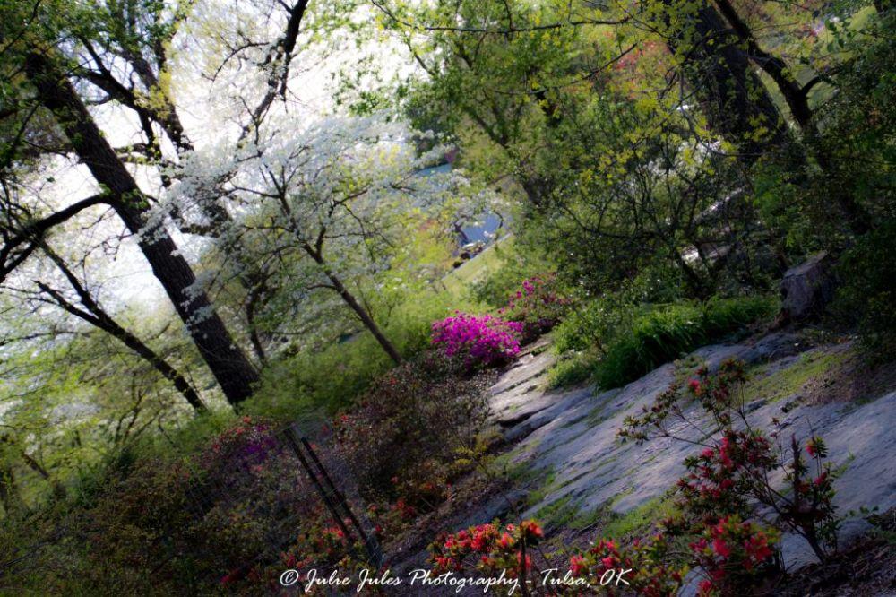 Garden Park Tulsa Oklahoma Flowers Trees