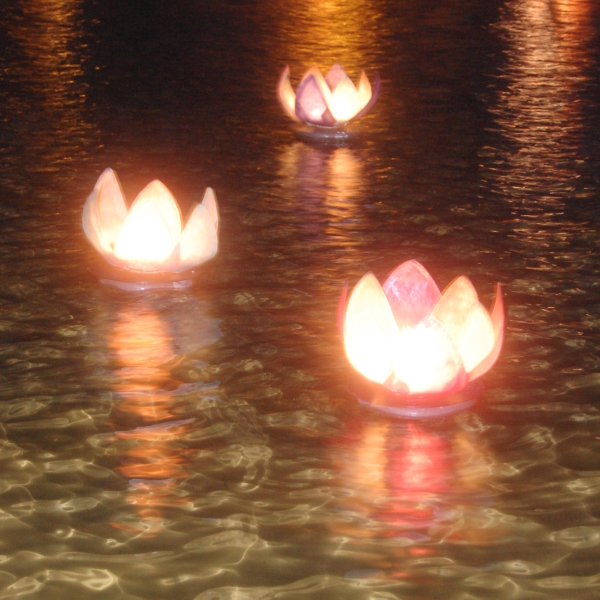 Flower lanters floating on the water