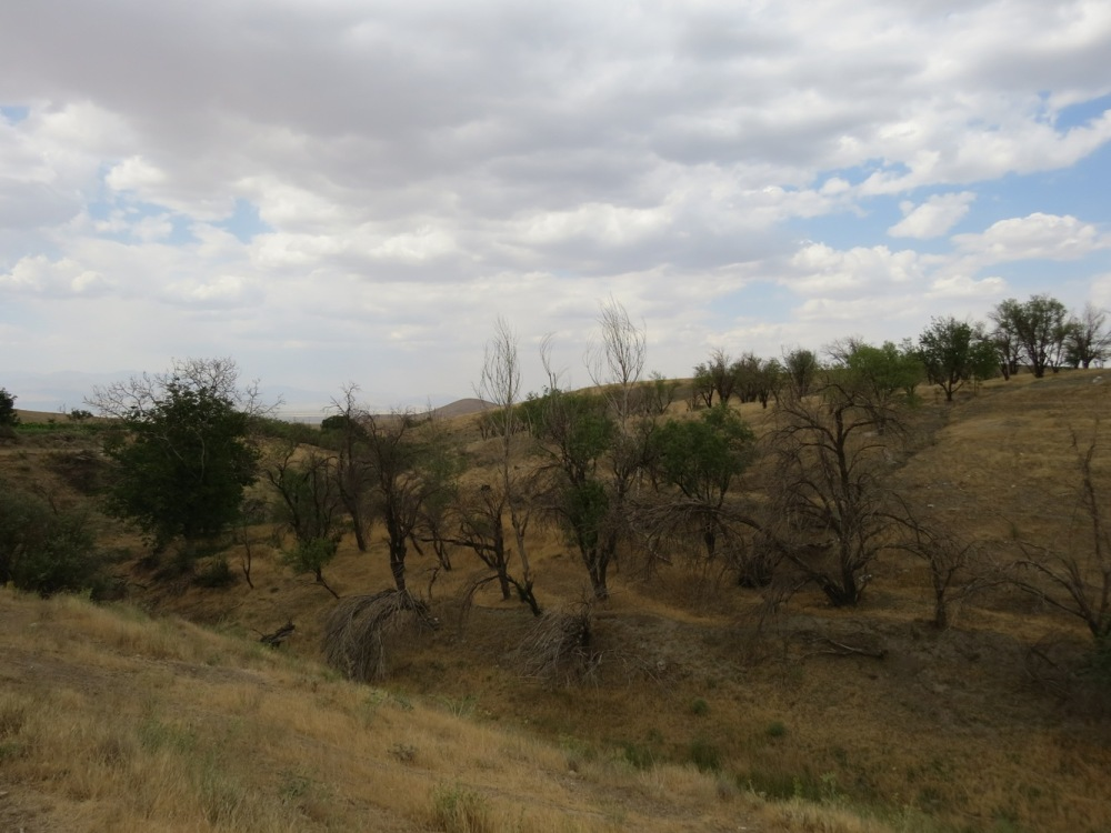 Irane , Iraneh , روستای ایرانه