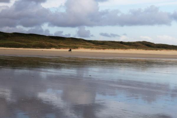 Sur la plage désertée.....