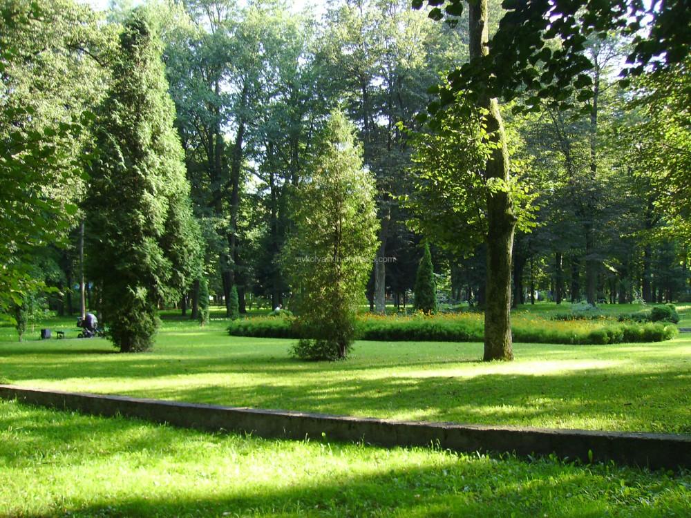 In  Ivano - Frankivsk  park