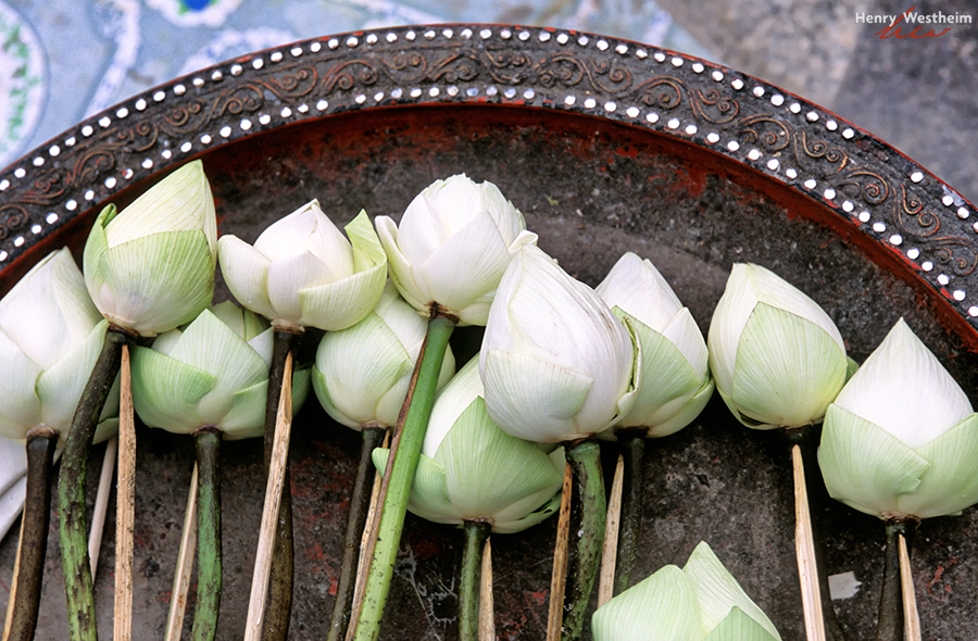 Flower Offerings At Buddhist Temple, Thailand