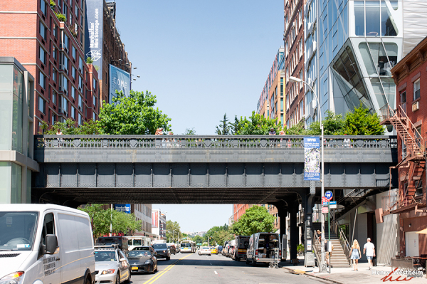 The High Line, New York City, NYC