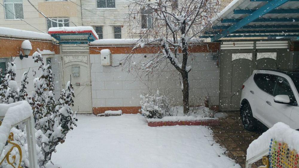 Snowy day