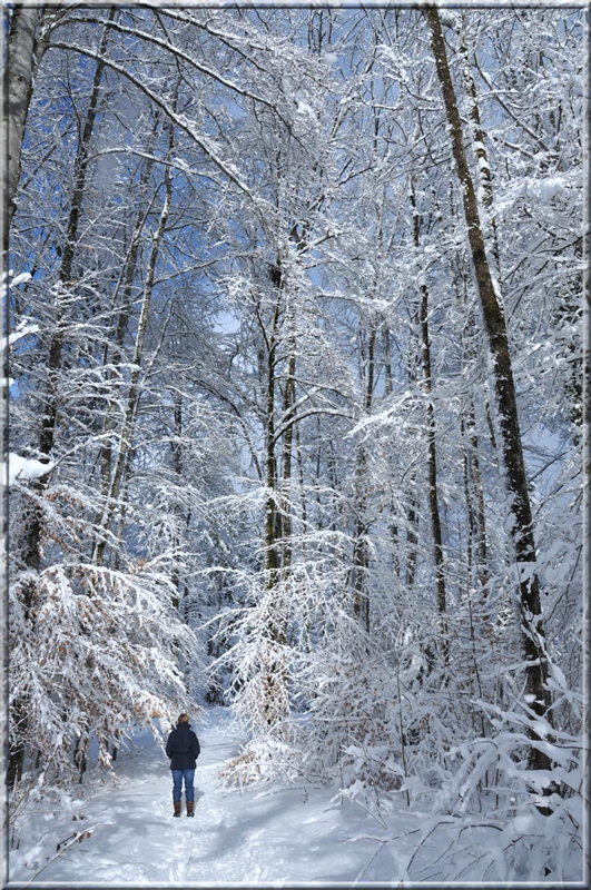 a woman is looking to trees covered with snow