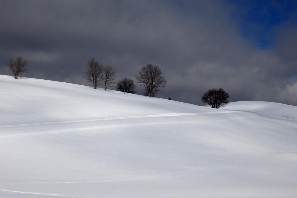 white snowy landscape in front of a dark sky