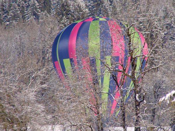 hot-air balloon doing a emergency landing
