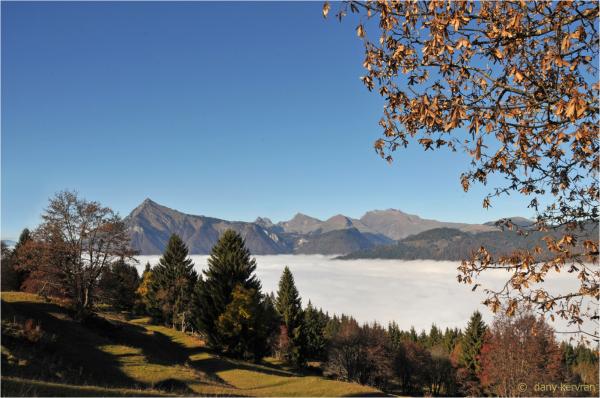 fog in Giffre valley (Haute-Savoie, France)