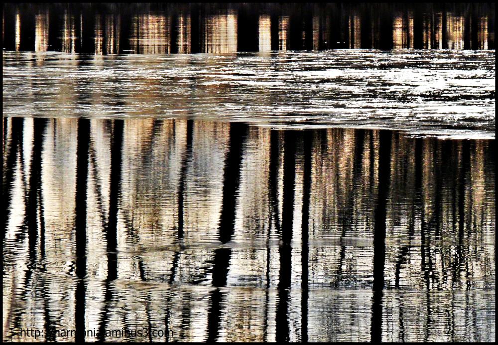Les étangs d'autrefois