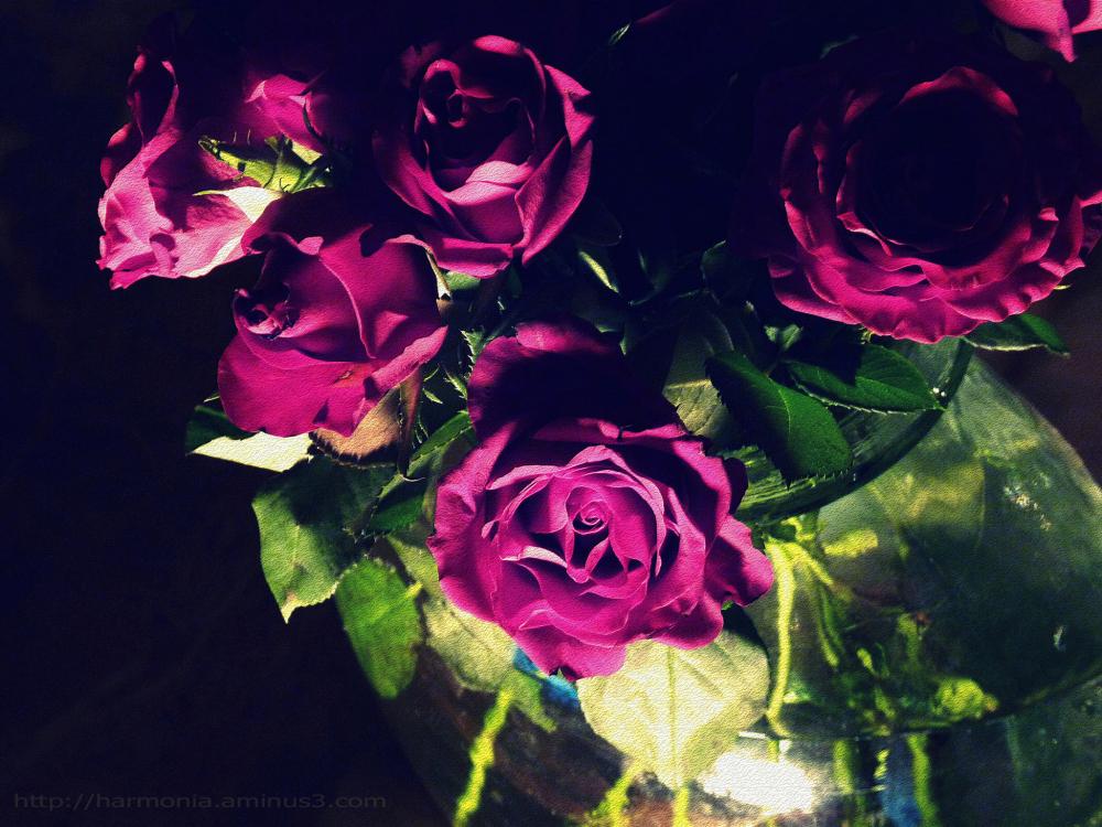 Variation autour d'un bouquet - 1