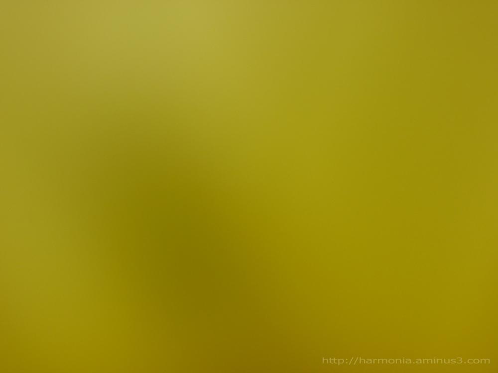 Monochrome 'coeur de jonquille'