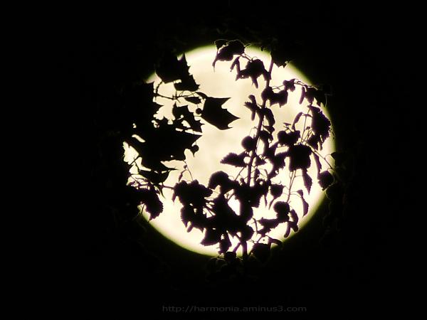 Pleine était la lune...