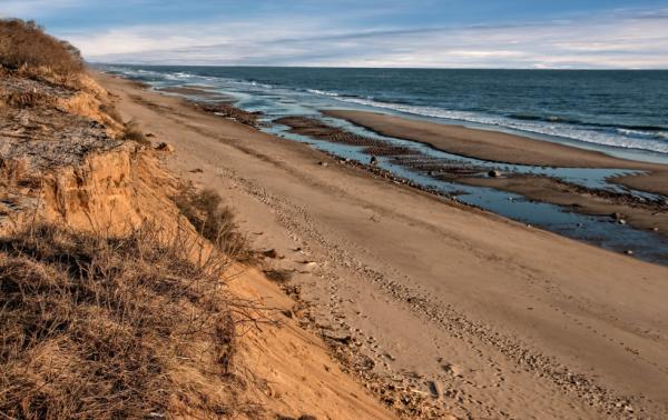 Morning Cape Cod
