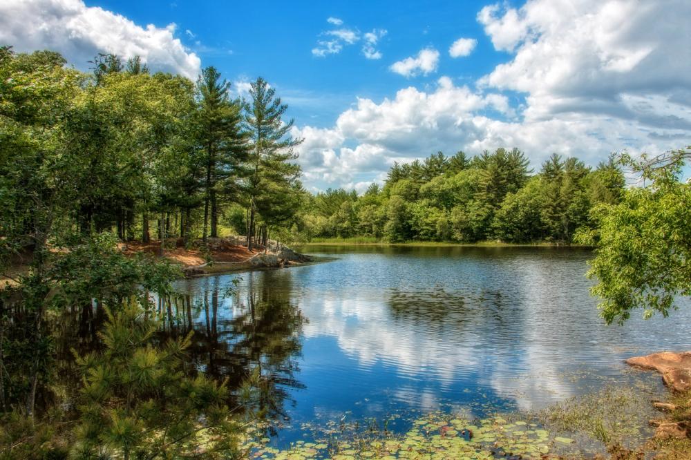 Abington Pond, Abington, MA