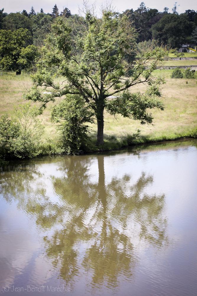Le reflet