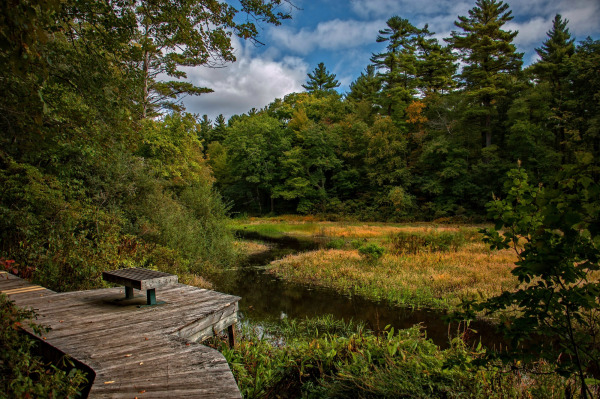 Norwell Reservation Massachusetts 2