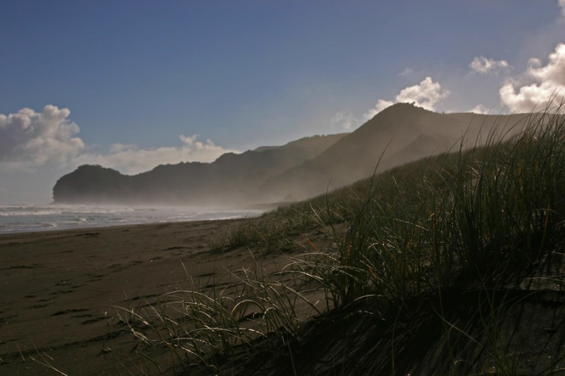 Black sand dunes of Piha Beach
