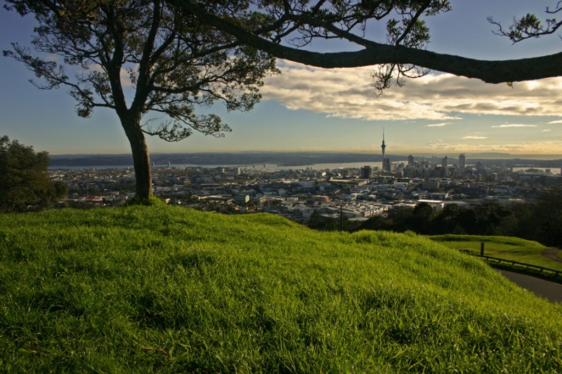 Sitting and reading on Mount Eden