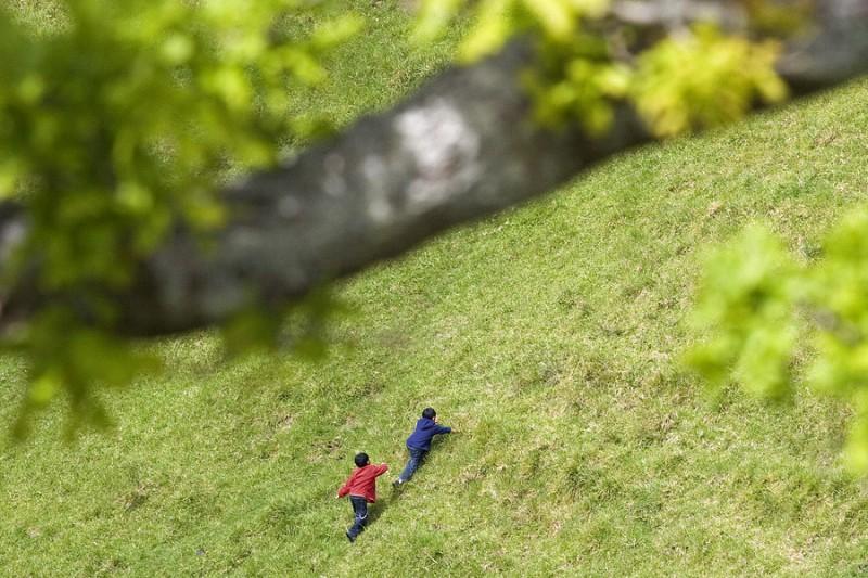 Climbing Mount Eden