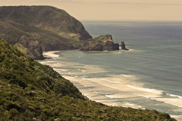 Overlooking Piha beach
