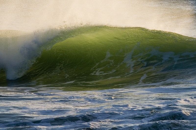 Curling green wave