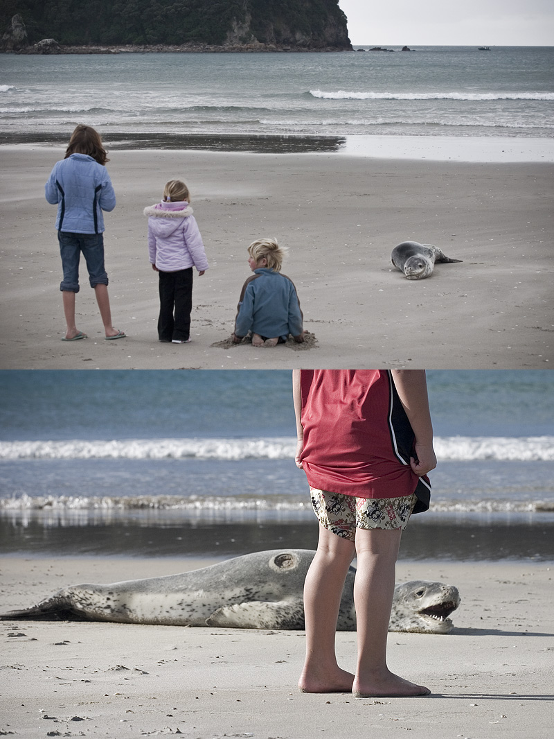 Children by the Leopard Seal