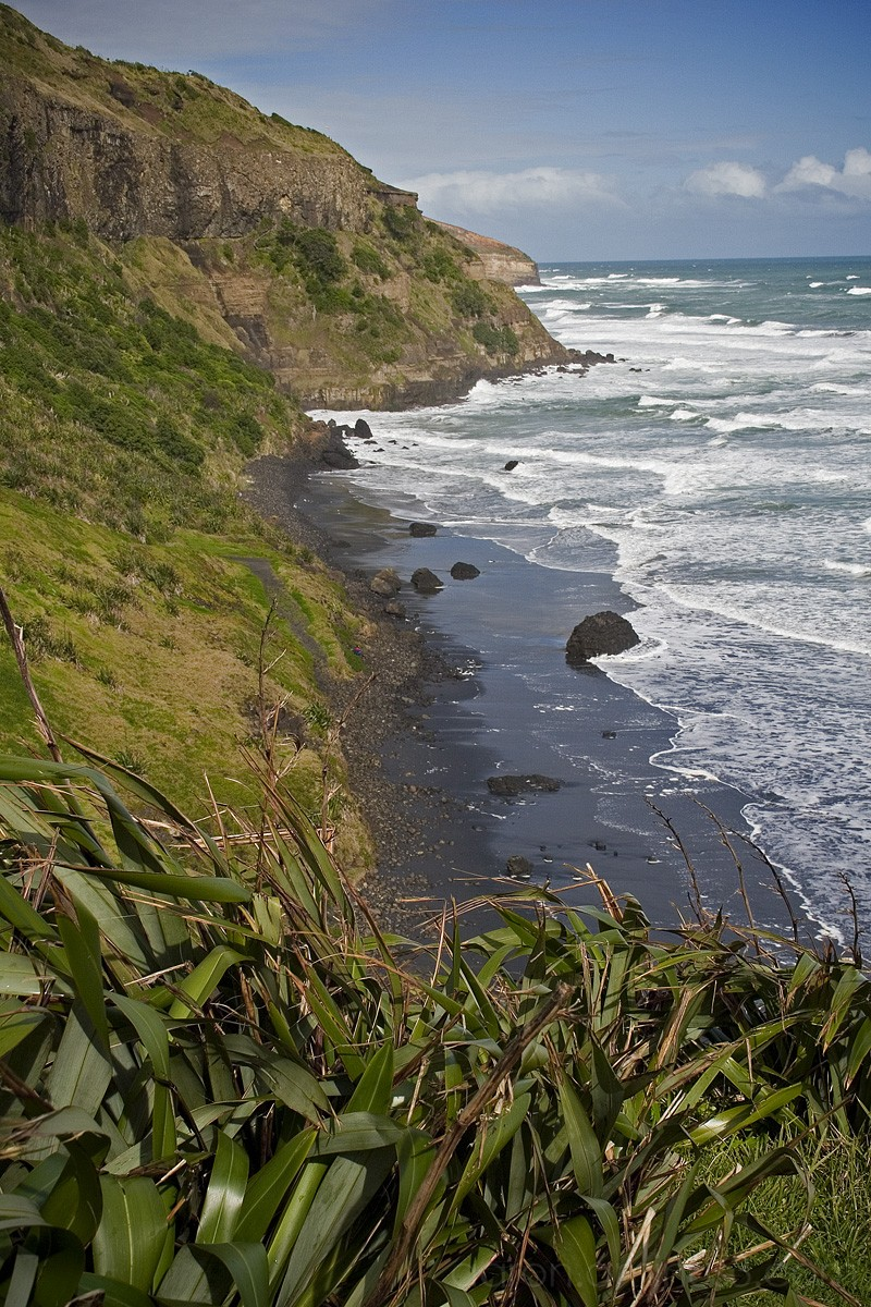 Muriwai Beach, west coast of New Zealand