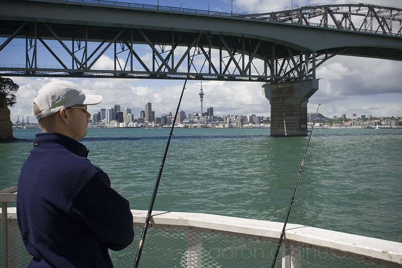 Fishing by the Auckland Harbour Bridge