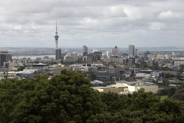 Auckland from Mount Eden
