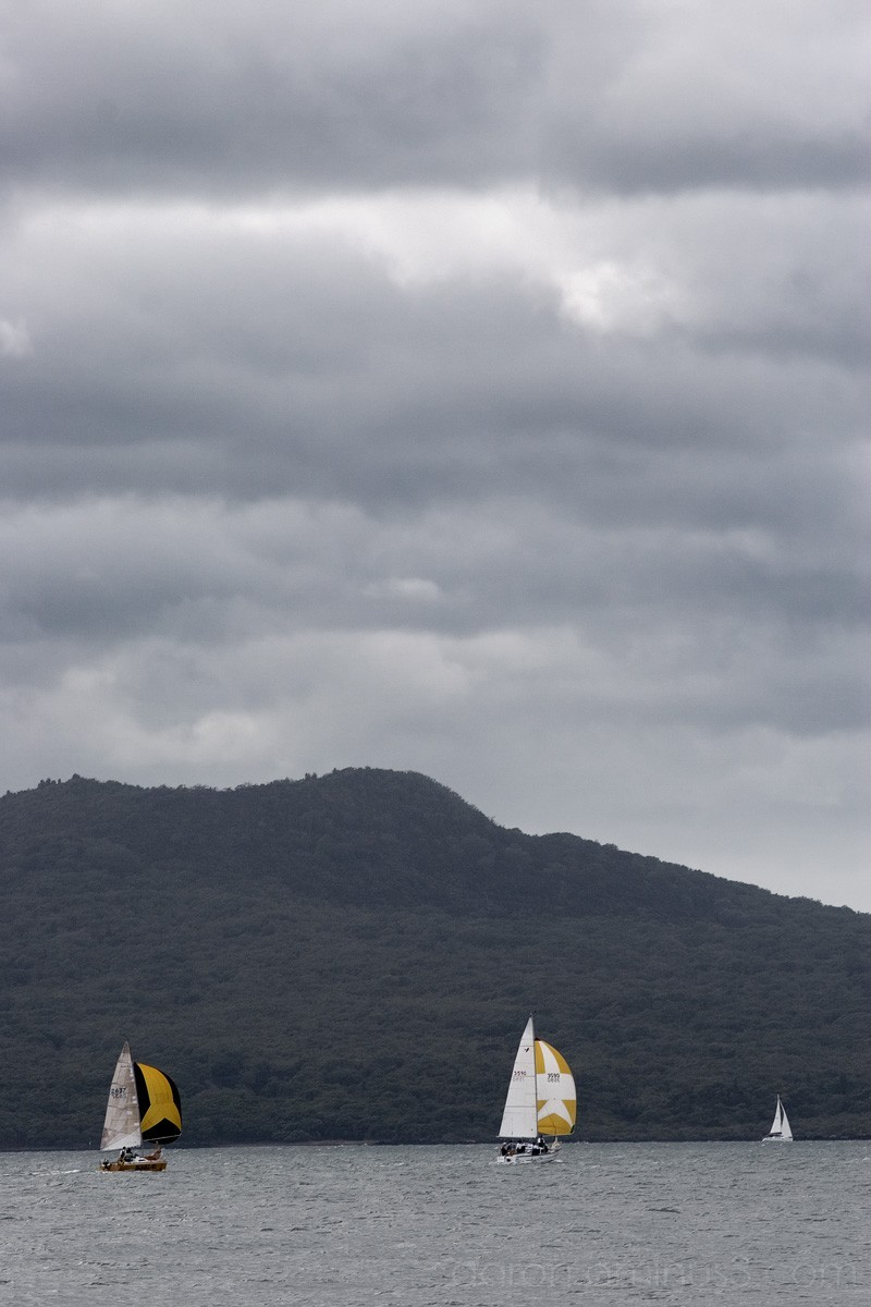 Yellow sails on Rangitoto