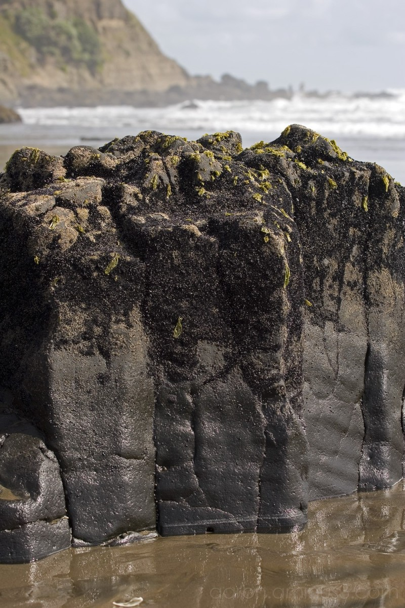 Rock column on Muriwai beach