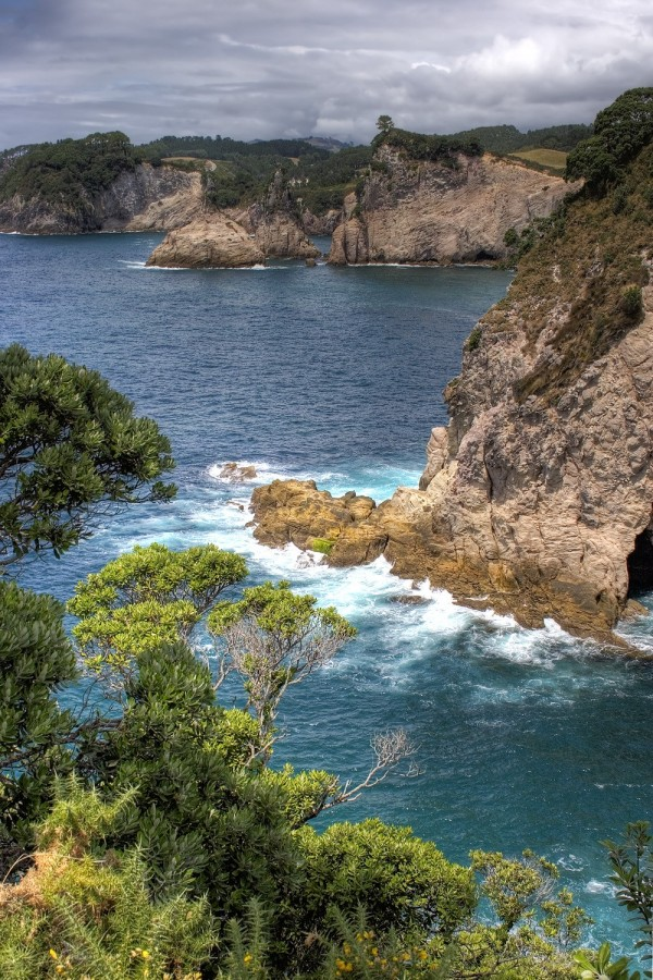 Along the coast, Coromandel, NZ