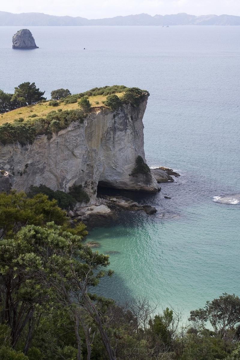 Along the coast from Hahei beach