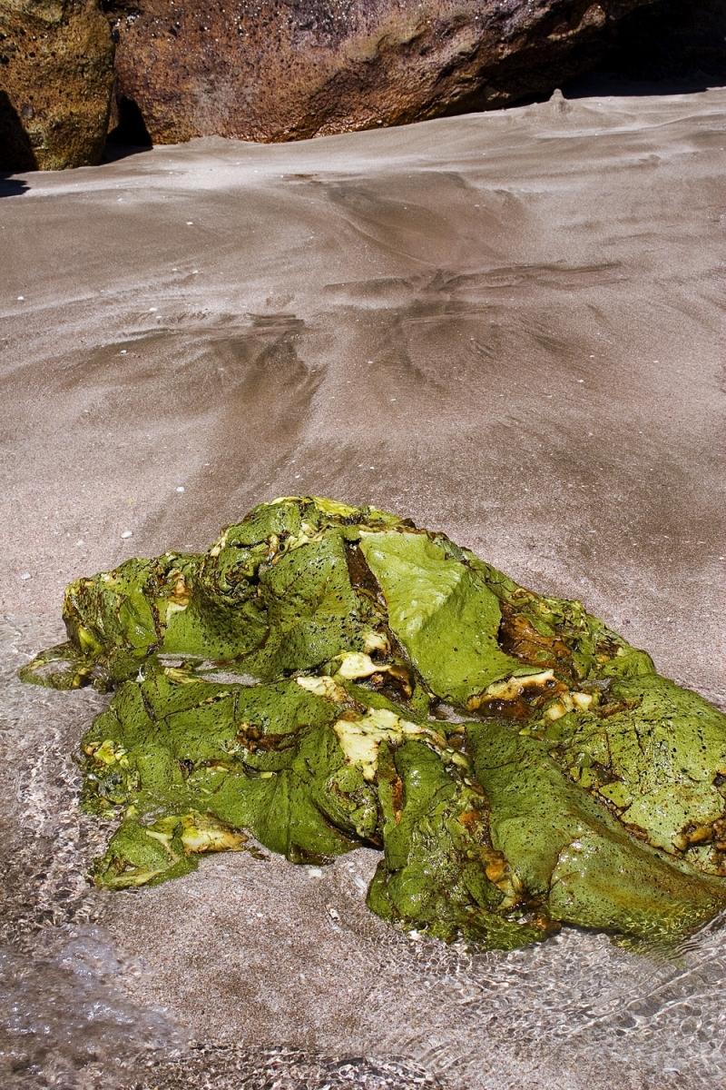Green rock on Hot Water Beach