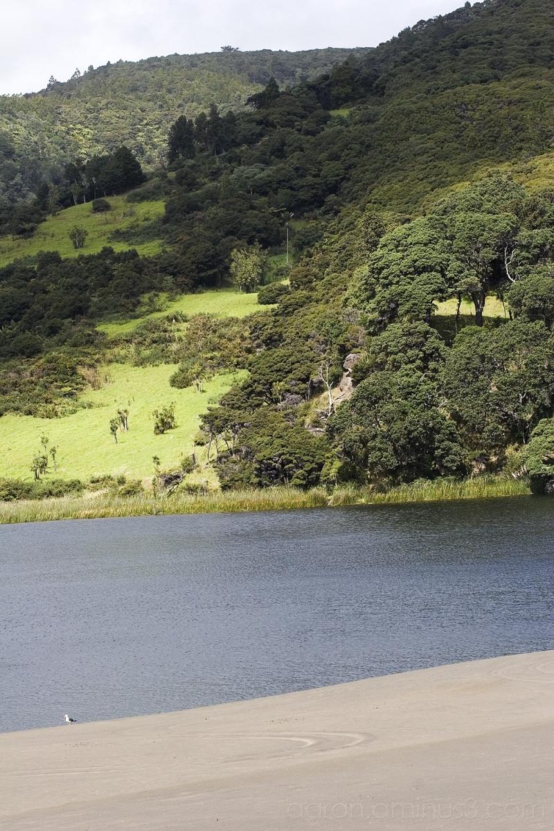 Lake Wainamu near Bethell