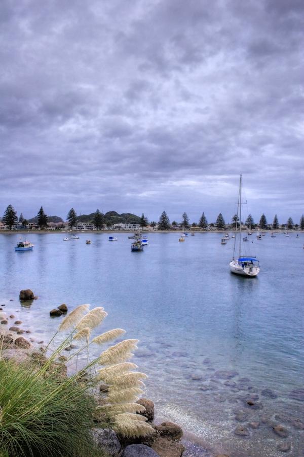 Boats in Tauranga Harbour