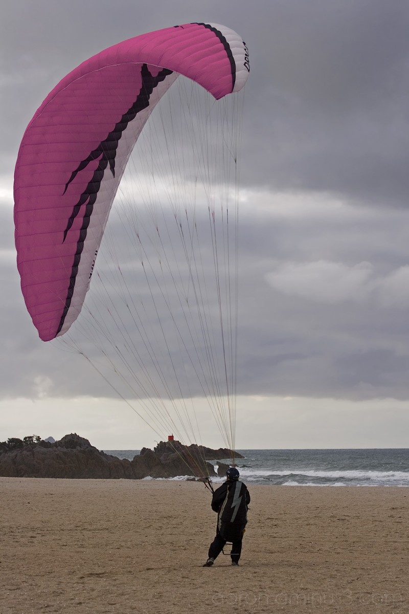 Paraglider landing on the beach