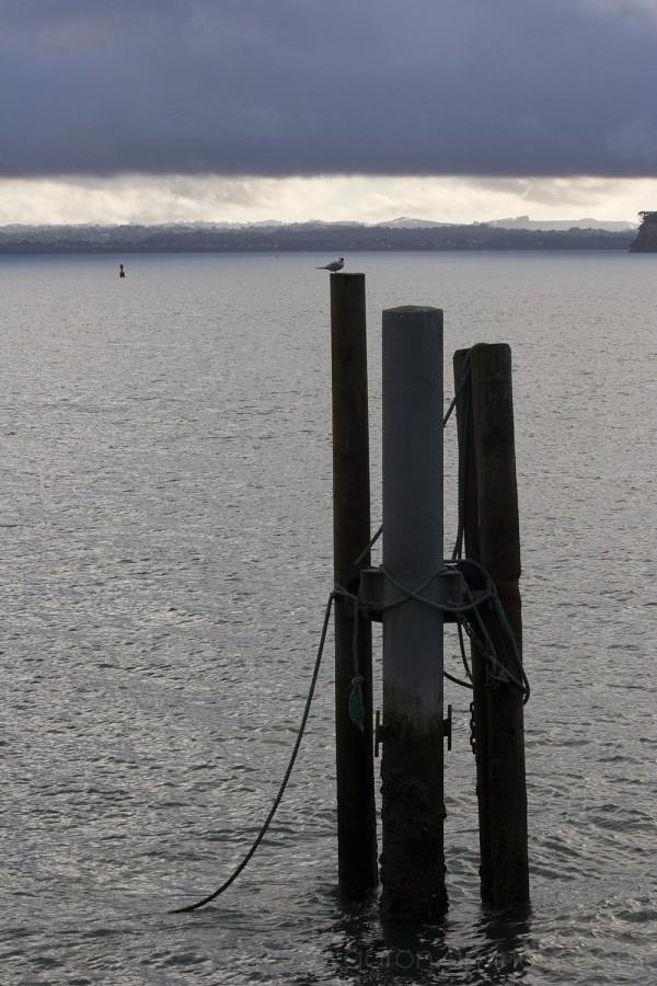3 poles in the sea