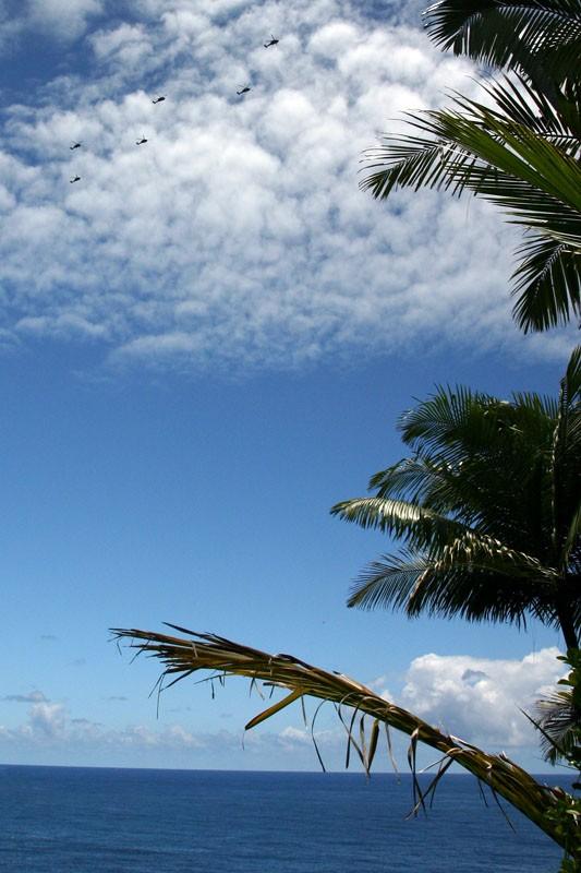 black helicopters sea plam sky hawaii