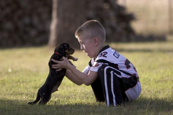 Hayden gets a Puppy!