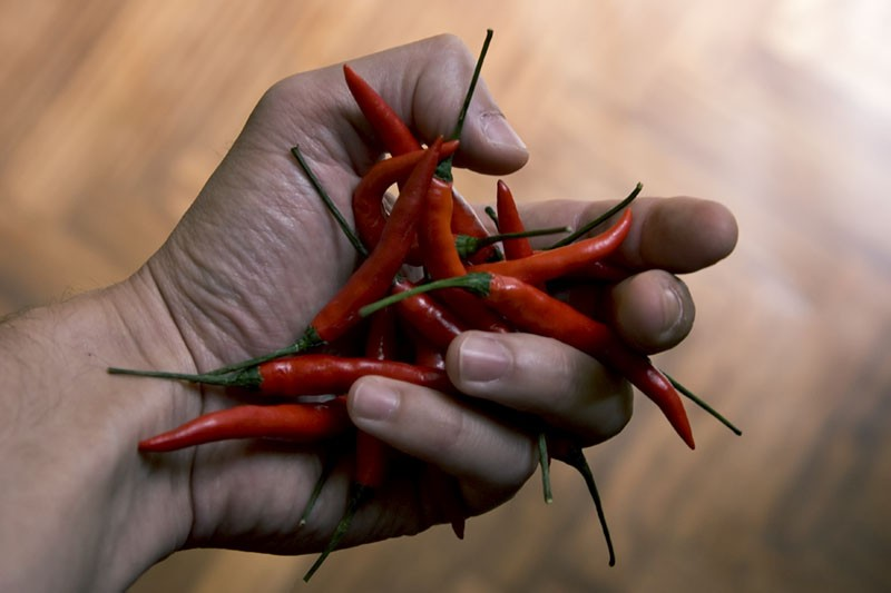 hand holding red chili pepper