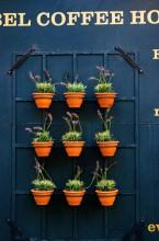 Prague coffee shop and flower pots